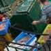 Retour de pêche à Guilvinec