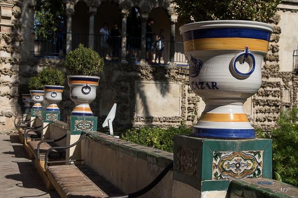 Séville - Jardin de l'Alcazar