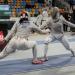Coupe du monde de sabre dames 2017 à Orleans