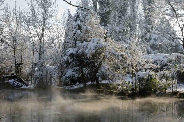 Le Loiret sous la neige
