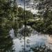 Balade au Loiret