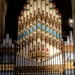 Sydney - Cathédrale St Andew