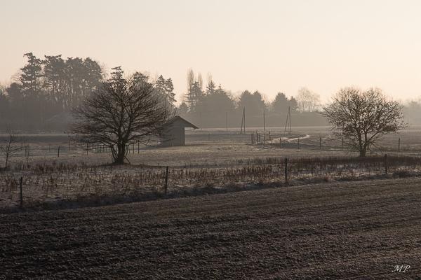 Petit matin d'hiver à St-Pryvé