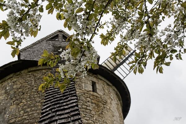 Moulin à vent de Frouville Pensier (28)