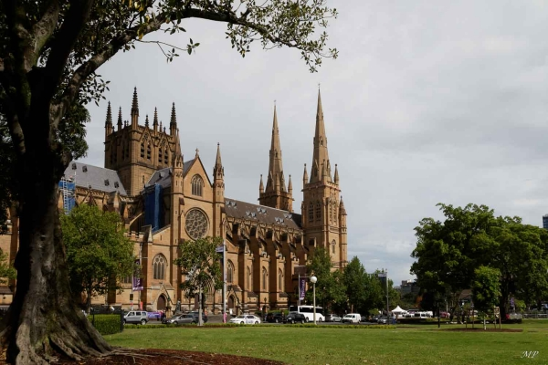 Sydney - Cathedrale Ste Marie