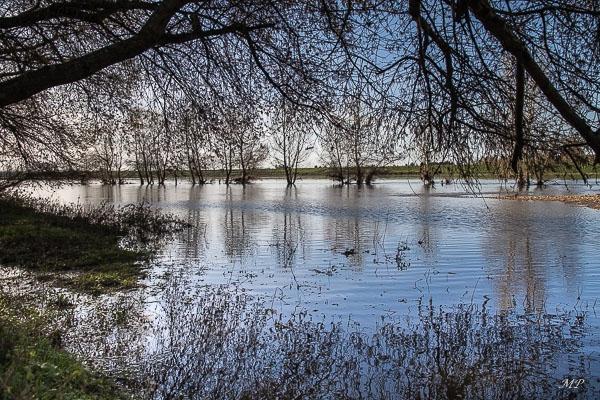 La Loire à Bou (45)